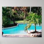 Tropical Swimming Pool Poster