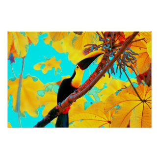 Tropical Toucan Bird Poster