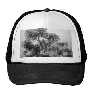 Tropical Tree Black and White in fog Mesh Hat