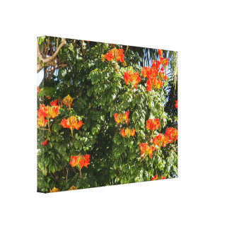 Tropical Tree | Orange Flowers Canvas Print