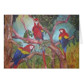 Tropical Trio Card