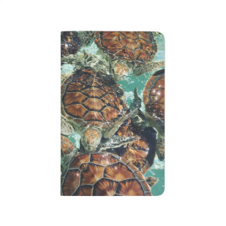 Tropical Turtles (Kimberly Turnbull Photography) Journal