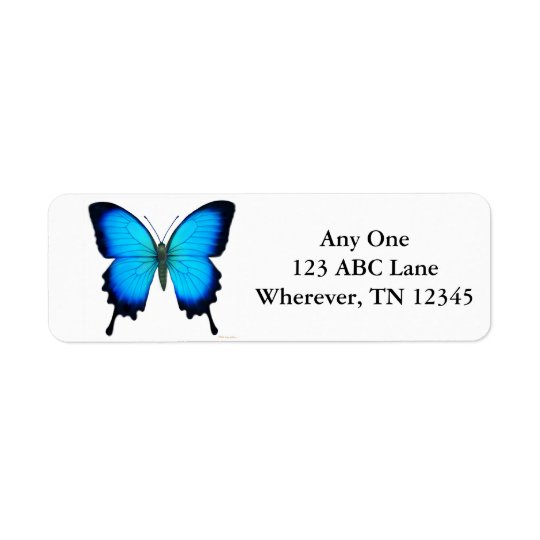 Tropical Ulysses Butterfly Label Return Address Label
