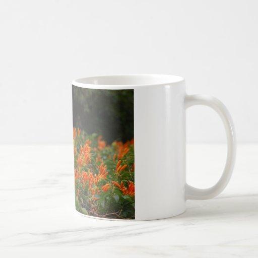 Tropical Vines Coffee Mug