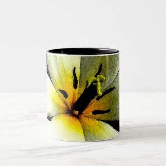 Tropical White Flower Mug