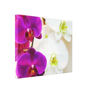Tropical White Orchids Number Three Canvas Print