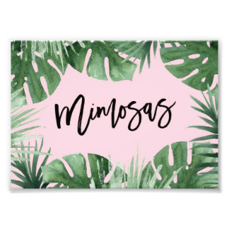 Tropics Mimosas Print Photograph