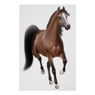 Trotting Bay Horse Poster