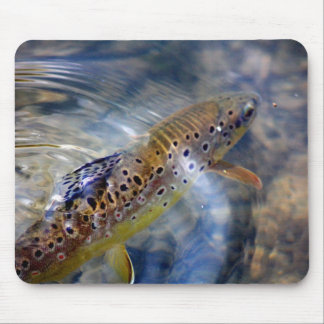 Trout - Fishing Mousemat