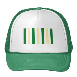 Trucker Hat with Green and Yellow Stripes