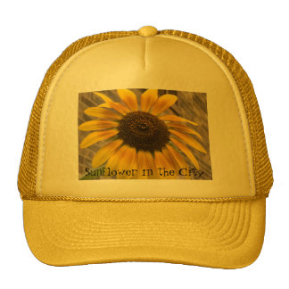 Truckers Cap -- Sunflower in the City