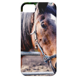 True Beauty Barely There iPhone 5 Case