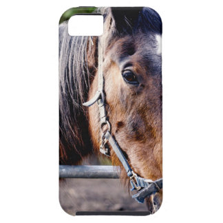 True Beauty iPhone 5 Covers