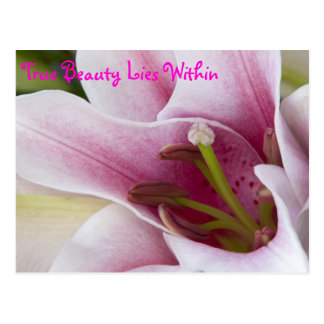 True Beauty Lies Within Postcard