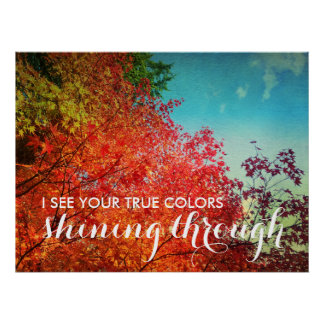 True Colours Shining Through Red Maple Leaves Tree Poster