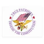TRUE PATRIOTS DEFEND THE CONSTITUTION POST CARD