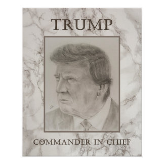 Trump, Commander in Chief Poster