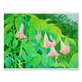 Trumpet flowers and cypress trees watercolor poster