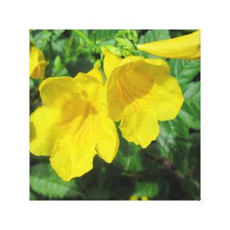 Trumpet Garden Flower Yellow Gallery Wrap Canvas