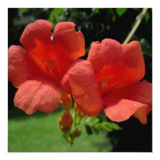 """Trumpet Orange Sunlit 5.25"""" Square Invitation Card"""