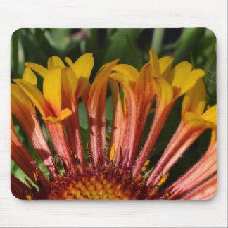 Trumpet Petals Flower Mouse Pad