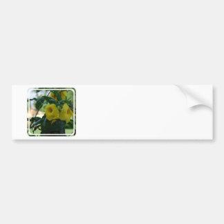 Trumpet Vine Bumper Sticker