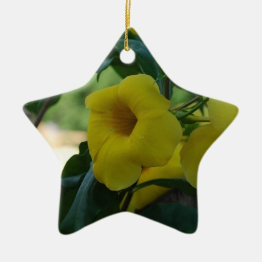 Trumpet Vine Christmas Tree Ornaments