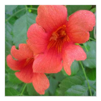 Trumpet Vine Orange 13 Cm X 13 Cm Square Invitation Card