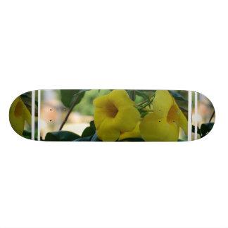 Trumpet Vine Skateboard