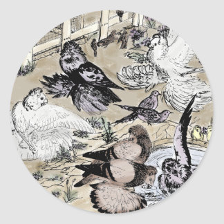 Trumpeter Pigeon Group Watercolor Round Sticker