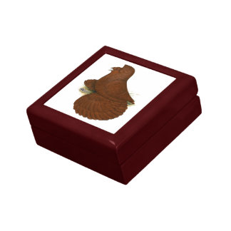 Trumpeter Pigeon Red Gift Box