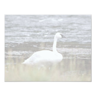 Trumpeter Swan Personalized Invite