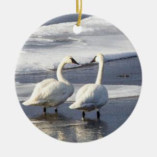 Trumpeter Swan Ornement Round Ceramic Decoration