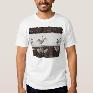 Trumpeter Swan Pairs T Shirts