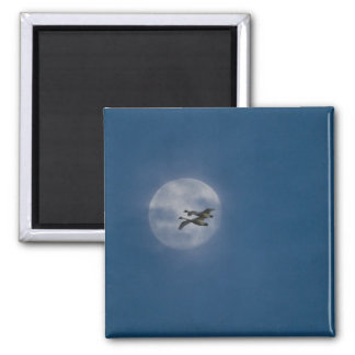 Trumpeter Swans (Cygnus buccinator) over winter Square Magnet