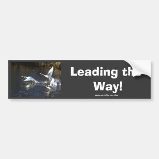 Trumpeter Swans Motivational Gifts Bumper Sticker