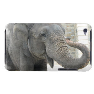 Trumpeting Elephant iTouch Case