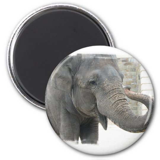 Trumpeting Elephant Round Button 6 Cm Round Magnet