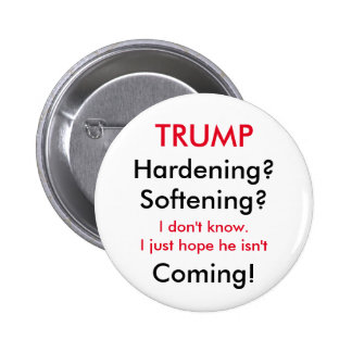 Trump's Stance on Immigration 6 Cm Round Badge