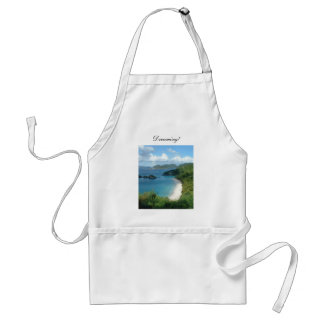 Trunk Bay, Dreaming! Aprons