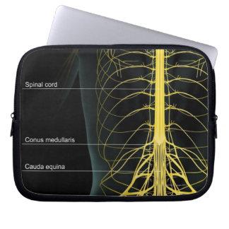 Trunk Nerve Supply Laptop Sleeve