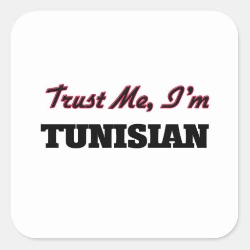Trust me I'm Tunisian Square Stickers