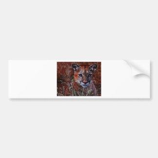 Trusted mountain lion bumper sticker