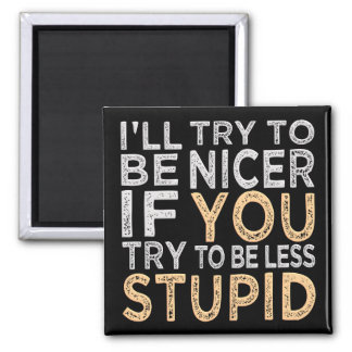 Try To Be Nicer magnet