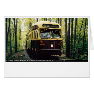 TTC PCC Forest Note Cards