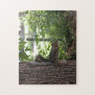 Tuckered Out Oklahoma Squirrel Jigsaw Puzzle