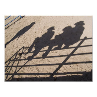 Tucson, Arizona: Shadows of Rodeo competitors Photograph