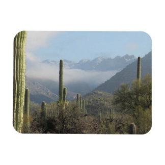 Tucson Desert Magnet