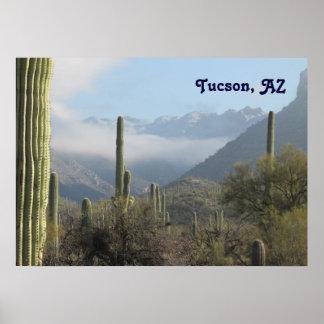 Tucson Desert Poster