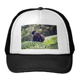 Tui Trucker Hat